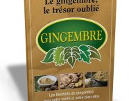 gingembre_tresor_oublie